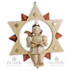 ESM 019 Angel in a Star Singer, 30 cm