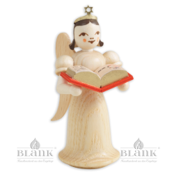 Angel with Long Robe and Story Book