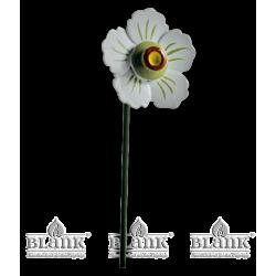 Blüte für Blumenkind, farbig